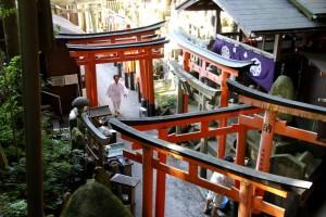 Chögyal Namkhai Norbu Visits Japan & Taiwan