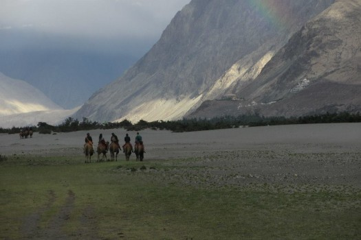 Camel riding in Nubra Valley. Photo by Jamyang Oliphant