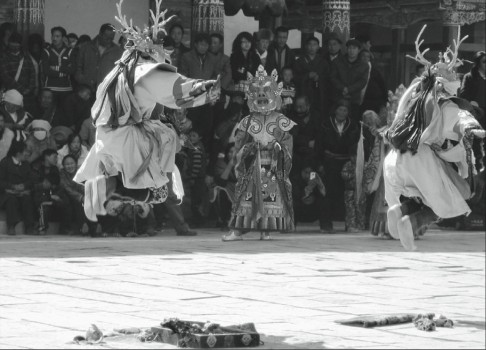 Cham dances at Khumbhum Monastery in Amdo, today Qingha Province, to celebrate Losar. Photo F. Grassi