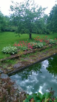 flowers and lake at the location of the stupa in estonia