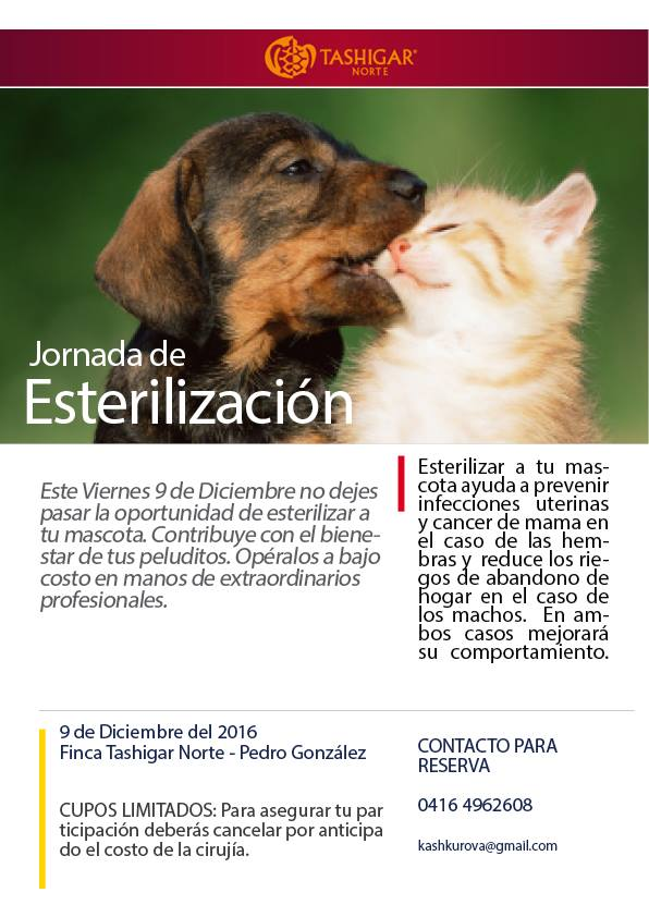 Publicity poster that announces our first massive sterilization day for December 9th.