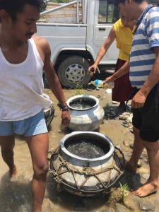Vesak Fish Release in Trishuli River, Nepal