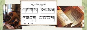 Tibetan DharmaLanguage Online