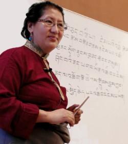 Online Traditional Training in Tibetan Medicine, February 12th, 2019