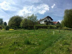 Planned Activities at Dzogchen Community Yeselling, Austria