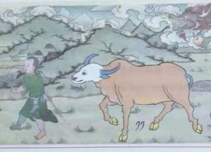 The Metal Ox Year & the Tibetan Mewas