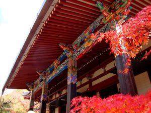 September 2-6 Chögyal Namkhai Norbu Kyoto Retreat