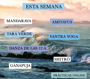 Tashigar South Online Practices on June 14-20